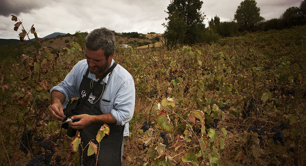 Chilean wine maker Derek Mossman Knapp
